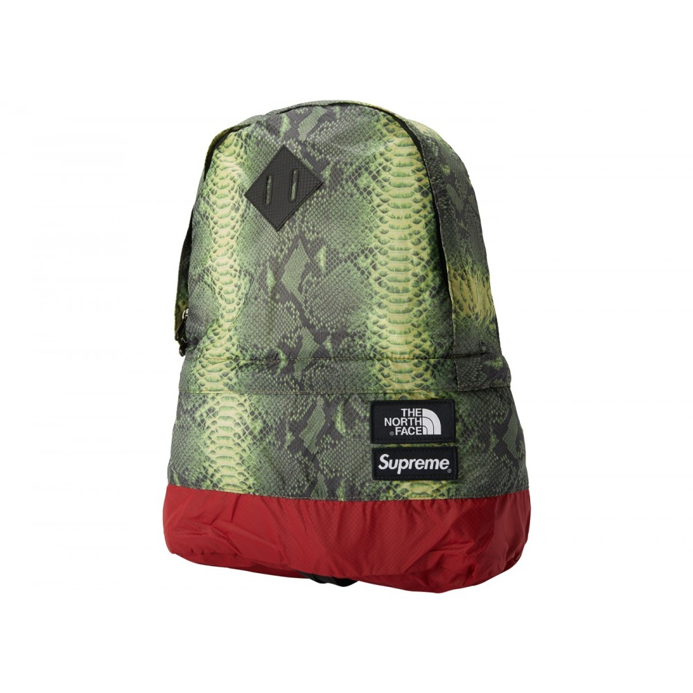 FW18 Supreme The North Face Snakeskin Lightweight Day Pack Green