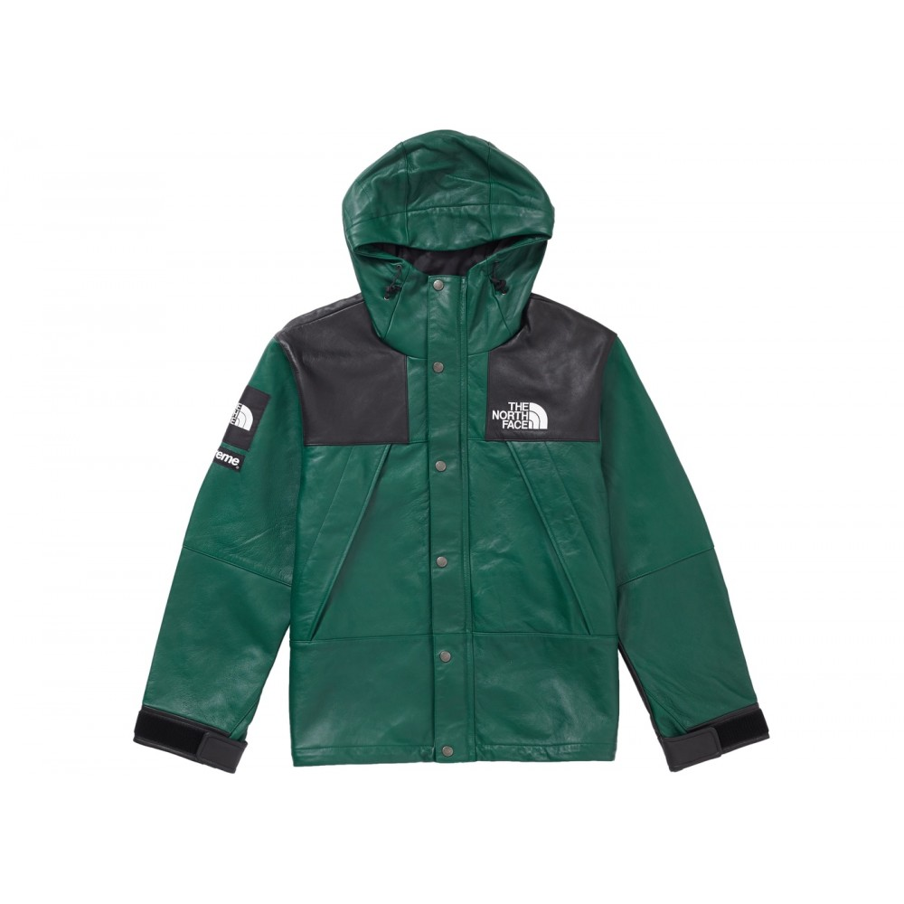 FW18 Supreme The North Face Leather Mountain Parka Dark Green