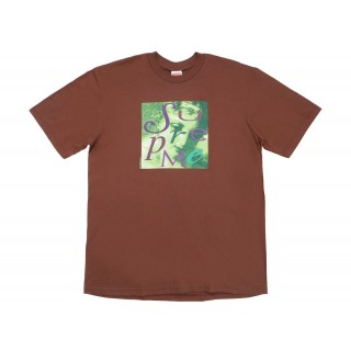 FW18 Supreme Venus Tee Brown